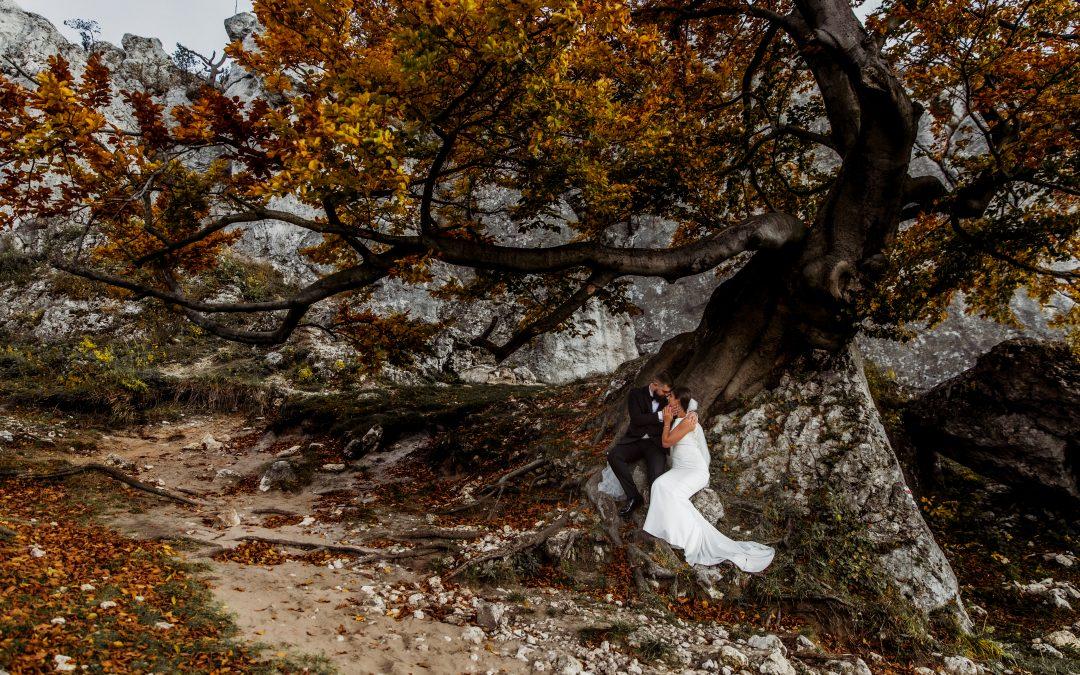 Kasia i Mateusz: plenerowa sesja poślubna
